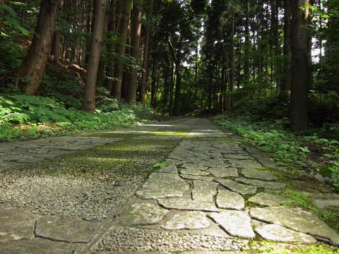 yuzekeikoku (5)