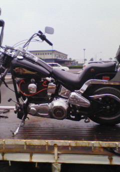 NEC100525.jpg