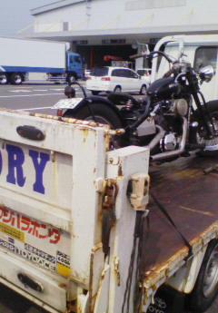 NEC100730.jpg