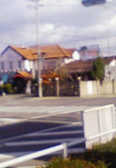 NEC_0048a.jpg