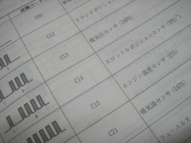 SANY0205.jpg