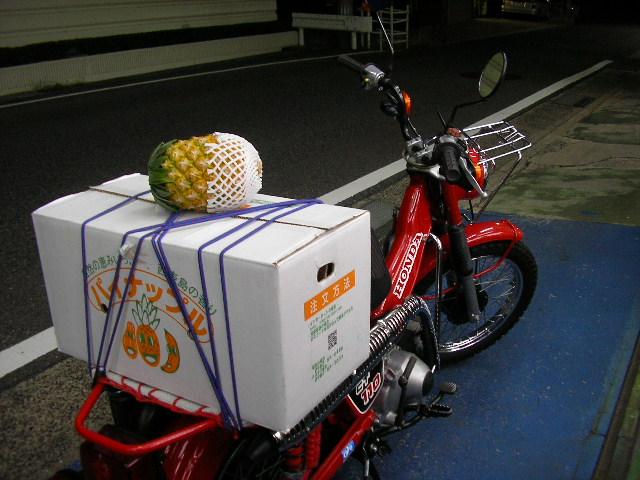 CT110とパイナップル
