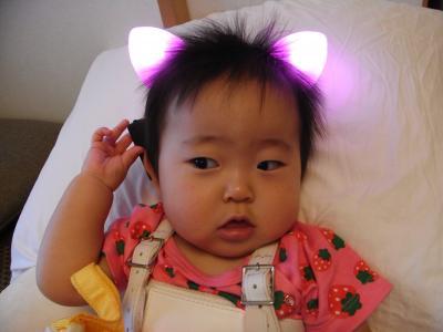 光るネコ耳