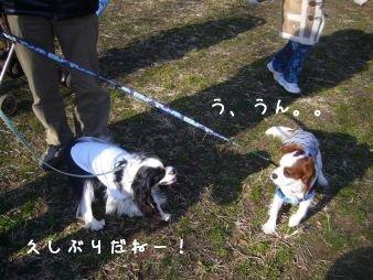090208_hikichidai03.jpg