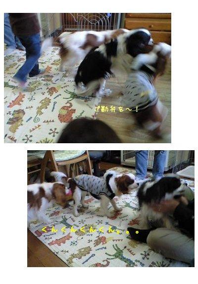 090208_yokosanhouse07.jpg