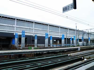 20100522Kuma_sta7084.jpg