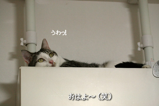 寝起き大ちゃん(笑)1