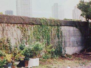 隅田川沿いの壁