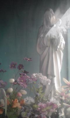 ウインドウの聖母