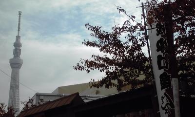 中村座とスカイツリー