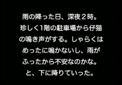 潜入作戦ぬこ その5 「緊急事態」前編
