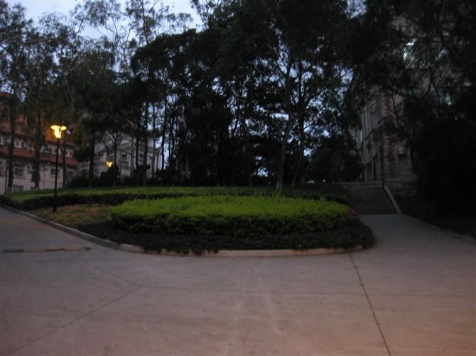厦#38376;大学2
