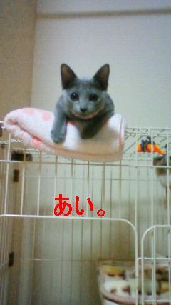200909142143001(burogu).jpg