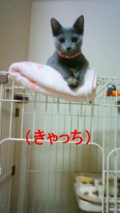 200909142143002(burogu).jpg