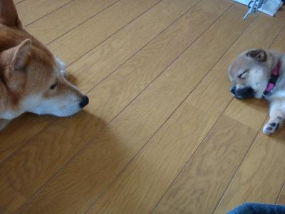 母と子(雪奈Ver.)