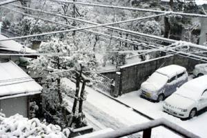 0803雪2