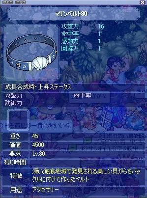 belt30200688.jpg