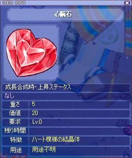 sinzouseki200662.jpg