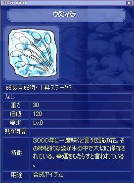udanbara20051216.jpg