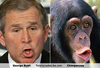 9george-bush.jpg