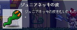 20061005222953.jpg
