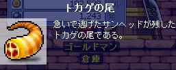 20070407204244.jpg