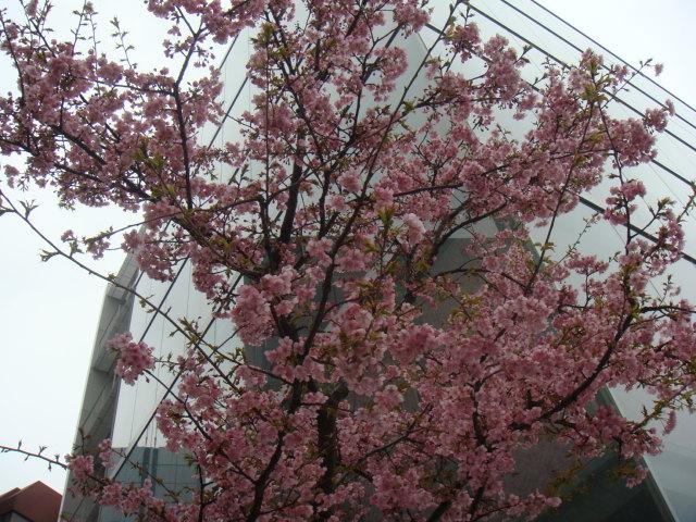 2012_03_21_05