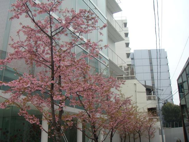 2012_03_21_06