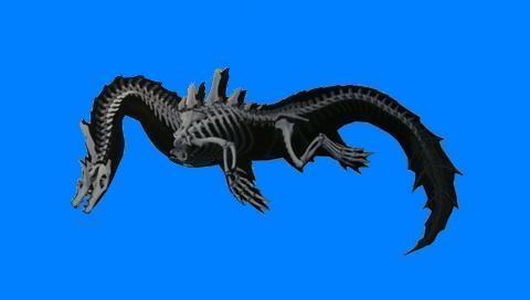 ラギアの骨格画像