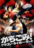 スマイルBEST かちこみ!ドラゴン・タイガー・ゲート スタンダード・エディション [DVD]