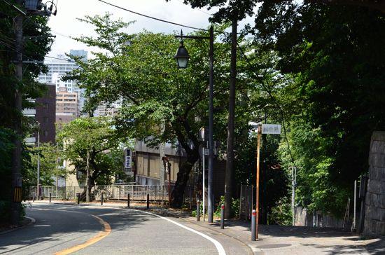 左が車が走る谷戸坂で、右が歩行者専用の旧谷戸坂