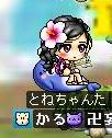 Maple00000.jpg