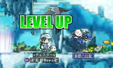 Maple0022_20080926150942.jpg