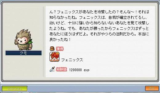 Maple0046_20080922132333.jpg
