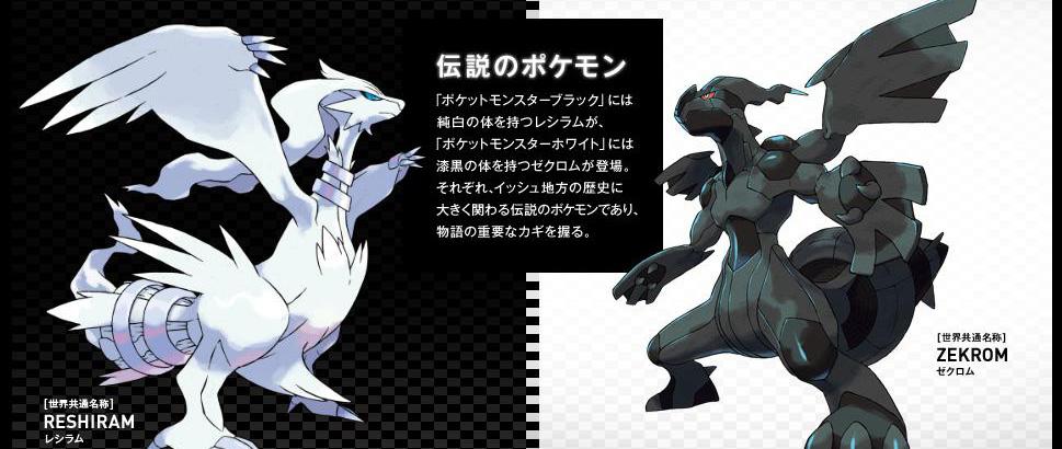 pokemon_black_white_site_20100529_1.jpg
