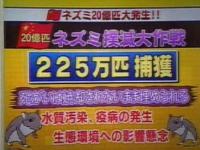 中国で20億匹のネズミが大発生!!