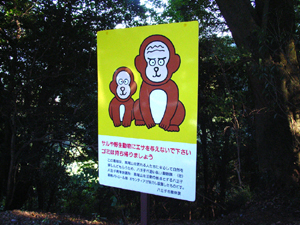 061010-takao22.jpg