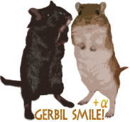 Gerbil Smile!+α