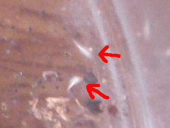 200907082.jpg