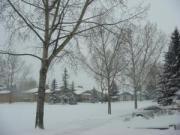 4月半ばも過ぎたのにこの雪2