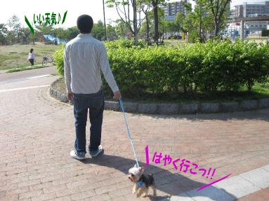 箱崎公園1