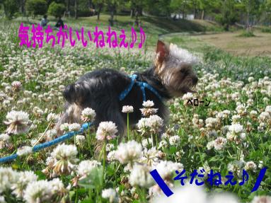 箱崎公園3