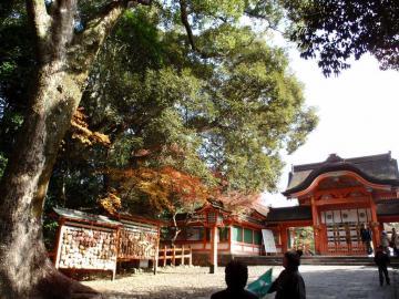 宇佐神宮本殿の入口