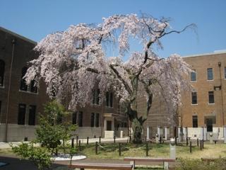 Apr06_2011