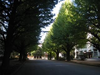 Nov22_2011