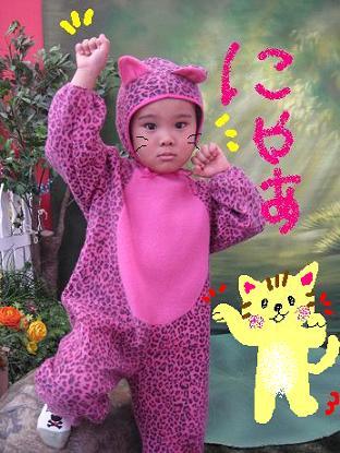 PINK豹