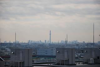 201012141.jpg