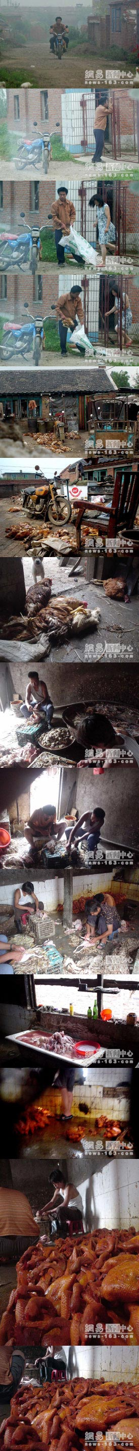 chicken-processing-in-china.jpg