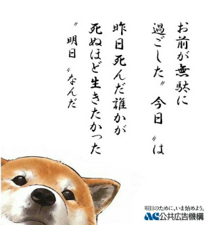 20060407162707.jpg