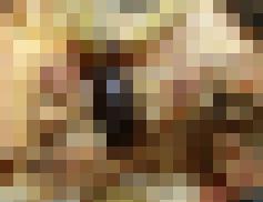 710e4_259_f4afc5322e78f5f2fb40c32dfc040740-m.jpg